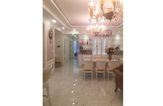 The spacious apartment for lease in Green Valley Phu My Hung district 7