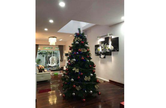 Luxury villa for rent in Sadeko Residence district 7 HCMC