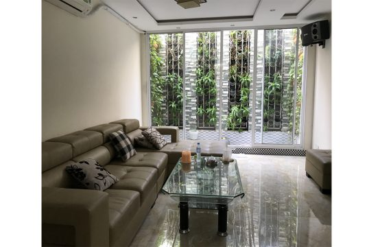 House located near Lotte mart Tan Hung ward district 7 for rent