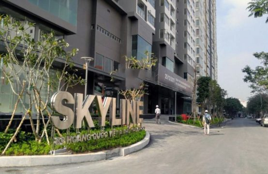 Apartment for rent in An Gia Skyline, District 7 HCMC
