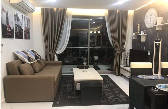 Beautiful apartment for lease in An Gia Skyline district 7 HCMC