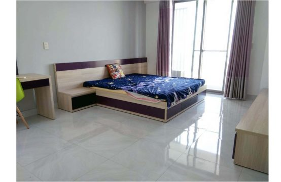 Apartment for lease in Green Valley Phu My Hung, block D, 11th floor, river view