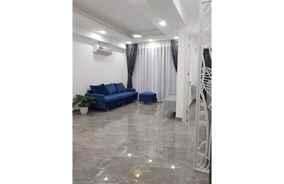 Brand-new apartment for lease in Hung Phuc Phu My Hung