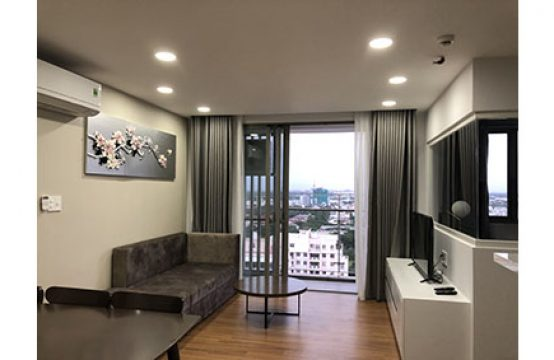 Modern apartment for lease in Happy Residence