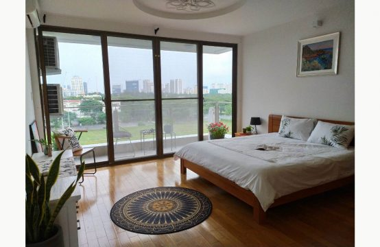 Nice Panorama apartment for lease in Tan Phong ward, dist. 7